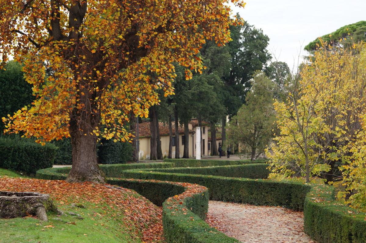 autumn-at-boboli-garden