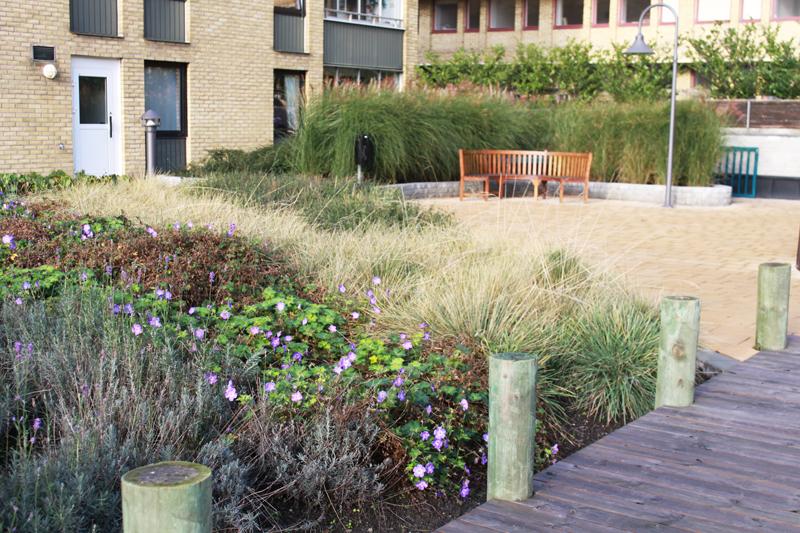 Norregatan-innergård med strandtema1