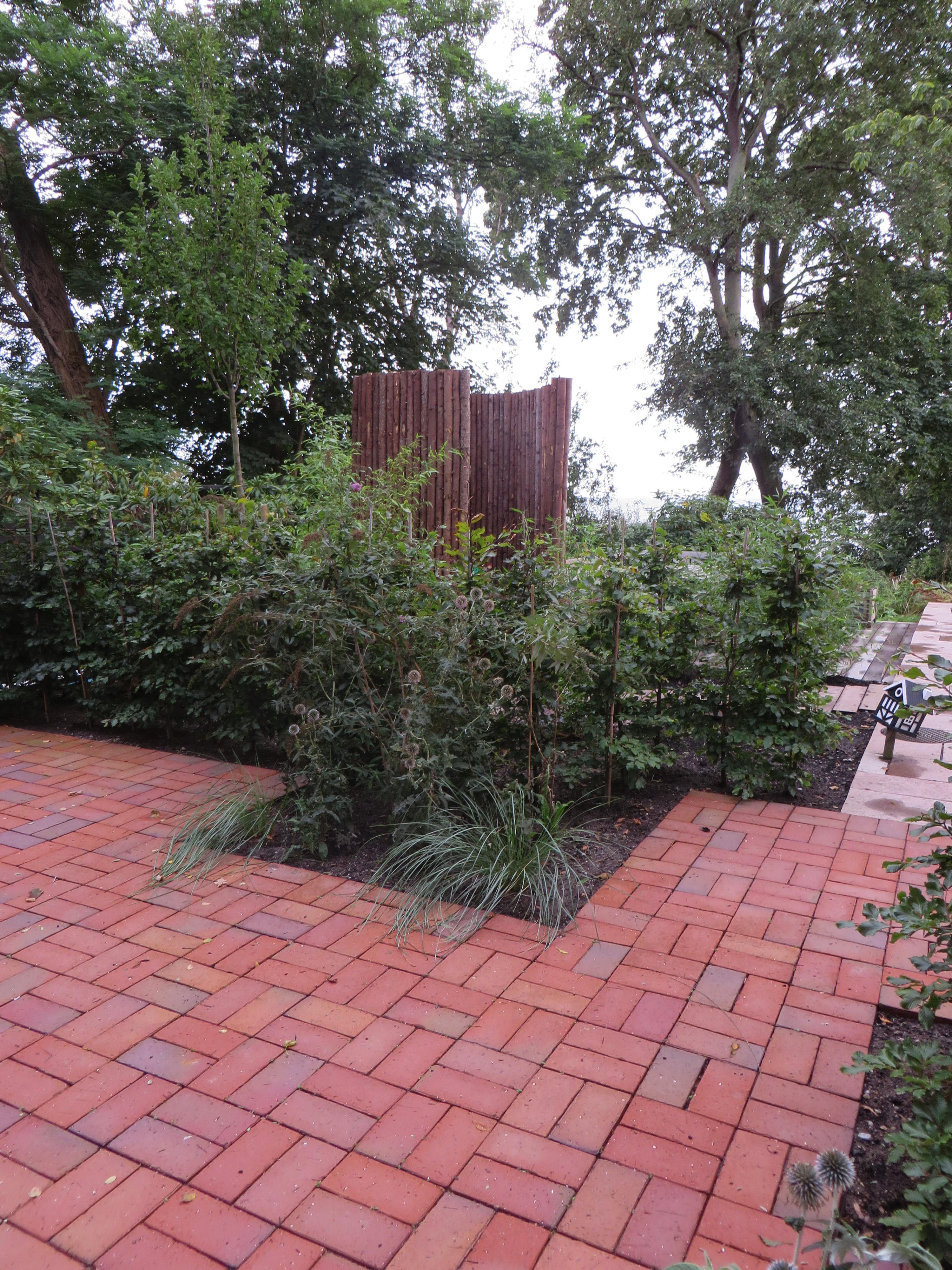 Trädgårdsrum för fjärilar